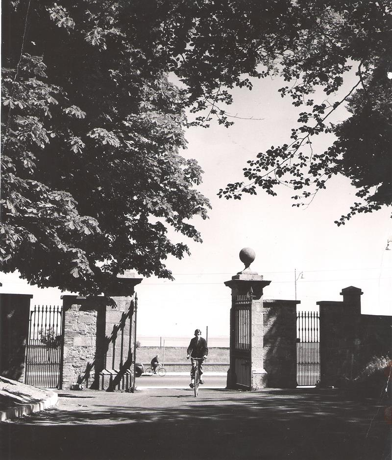 Cycling in the Gates