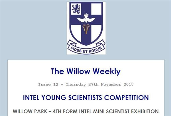 Willow Weekly Issue 12