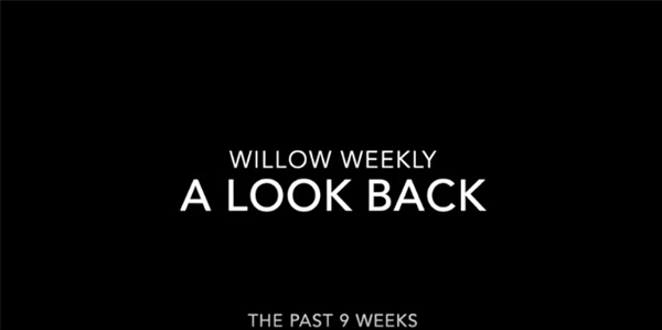 A look back on Term One from the Willow Weekly Team