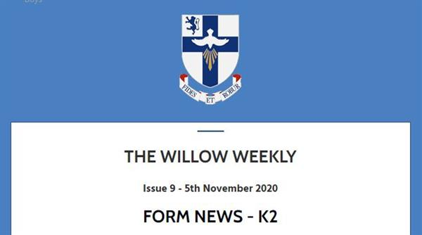 Willow Weekly Issue 9