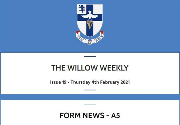 Willow Weekly Issue 19